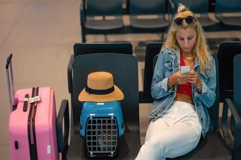 Travel Litter Box