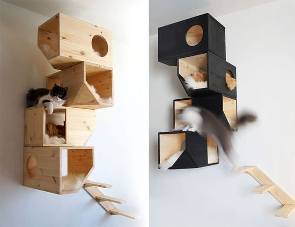 Cat Cages Are Wall Mounted