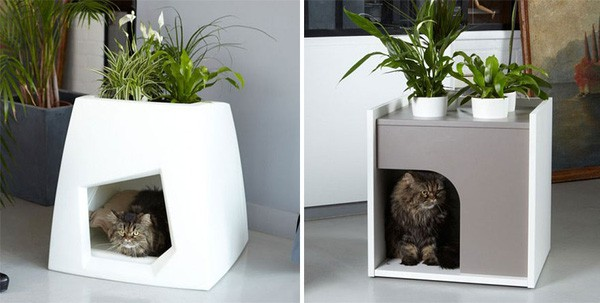 Planting Trees While Keeping Cats Is A Logical Solution