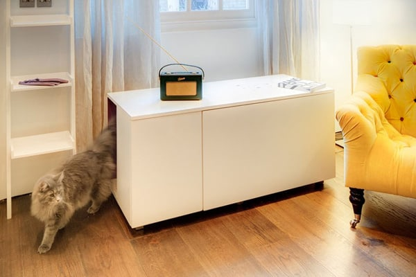 The Secret Bed For The Cats