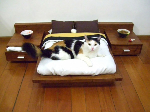 Tiny Bed For Cats