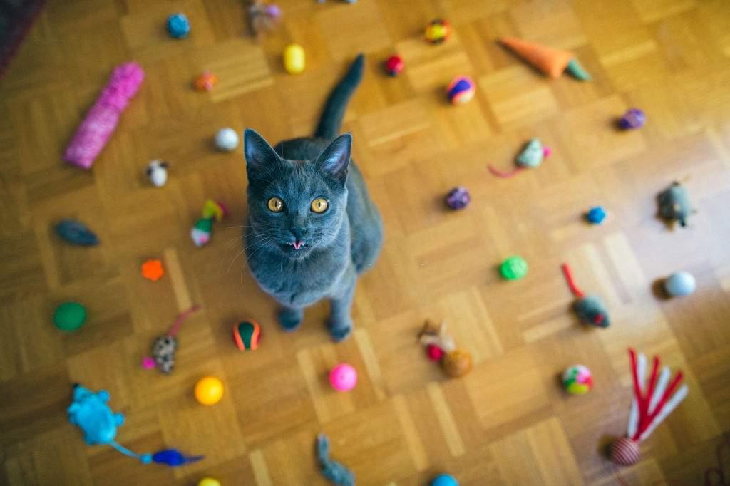 Electronic Cat Toys